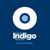 Reporte Indigo Guadalajara