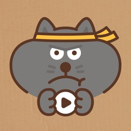 Jiggling Cat