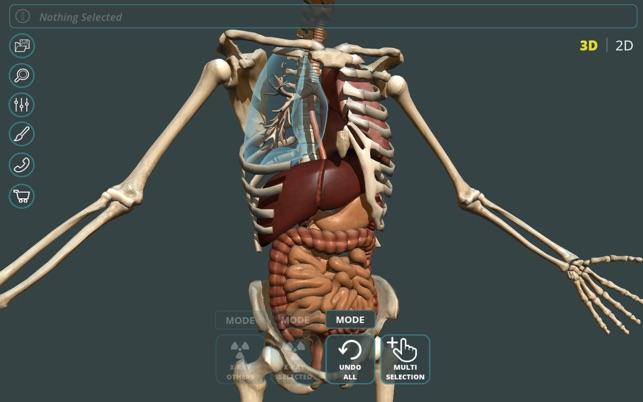 Visual Anatomy 3d Human On The Mac App Store