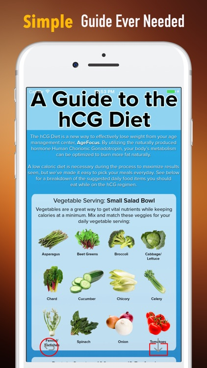 HCG Diet For Beginners-Science Of Losing Weight screenshot-1