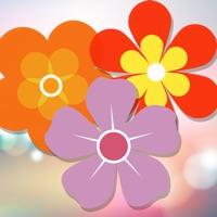 Codes for Flower Blossom Match 3 Garden Mania Hack