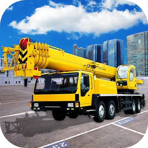 Real Crane Operator
