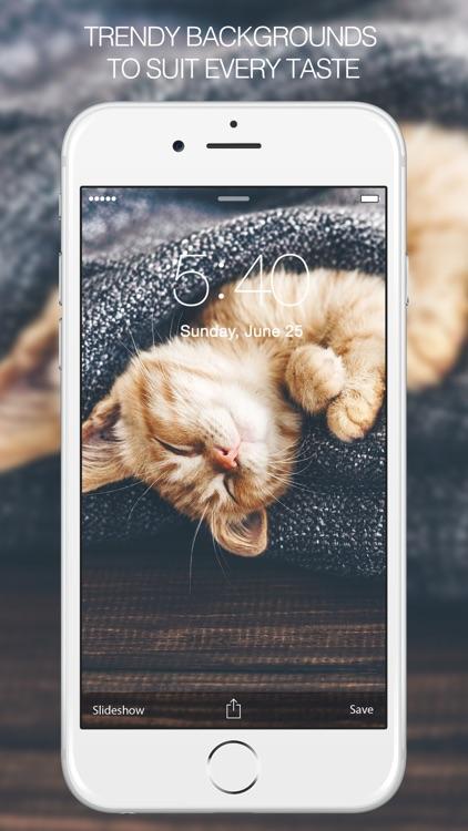 Cat Wallpapers & Cat Pictures screenshot-3