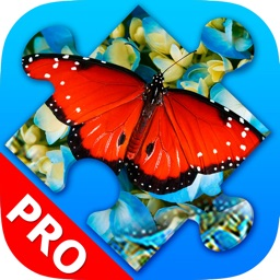 Butterfly Jigsaw Puzzles. Premium