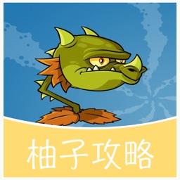 柚子游戏攻略 for 植物大战僵尸2 通关攻略
