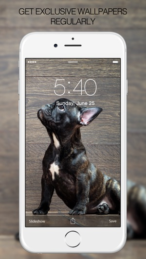 Puppy Wallpapers Cute Puppy Pictures Images On The App Store