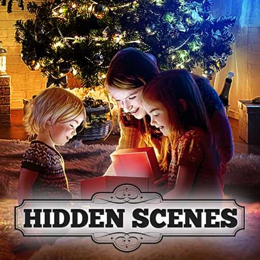 Hidden Scenes Christmas Puzzle