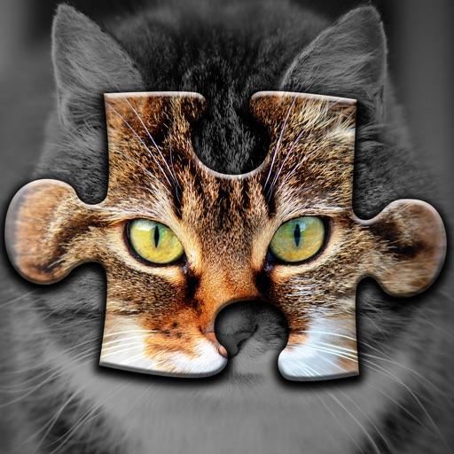 Cute Cats Jigsaw Puzzle Set