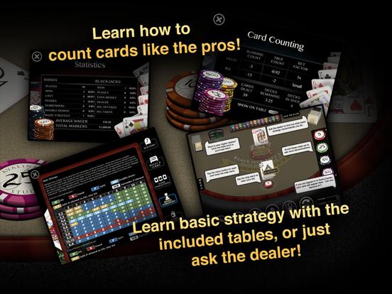 Blackjack 21 Pro screenshot