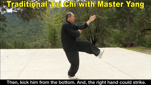 Yang Tai Chi for Beginners 2&3 on the App Store