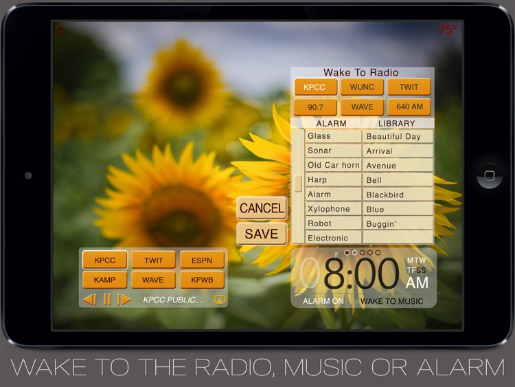 Beautiful Clock Radio lPad