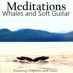 Meditations - Whales and Soft Guitar