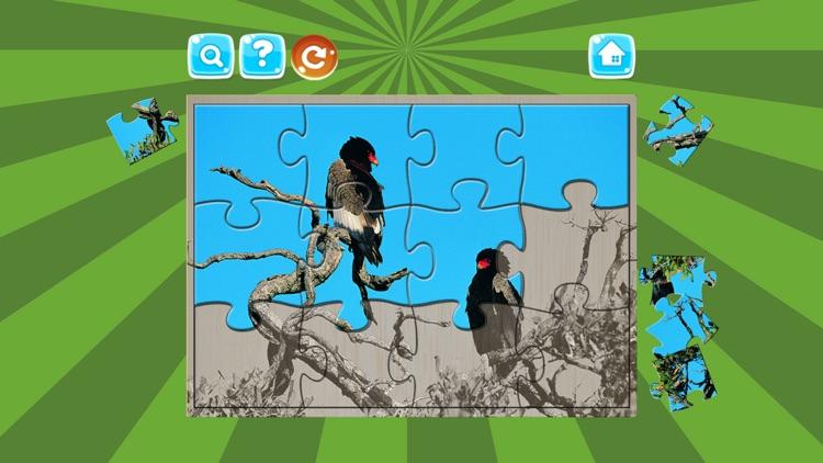 Birds Jigsaw Puzzles For Kids screenshot-4