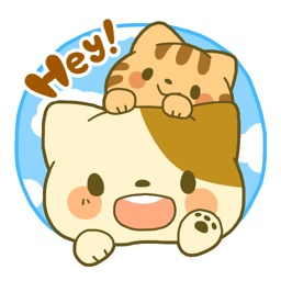 PokaPoka Friends - cute cats Sticker for iMessage