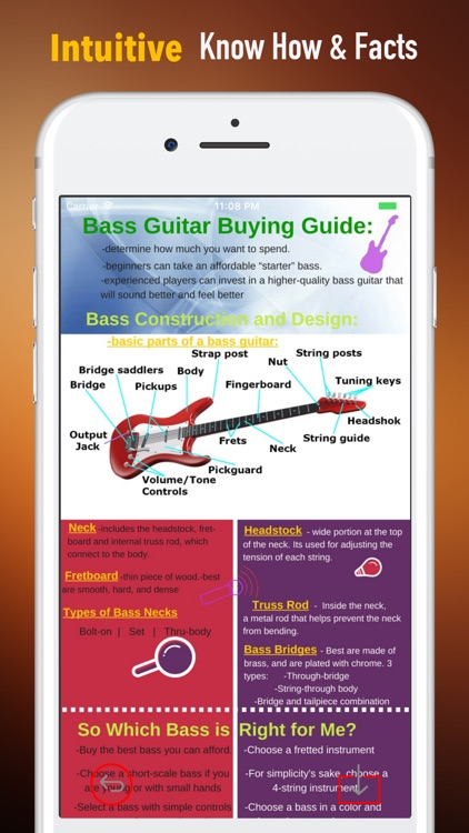 Bass Guitar for Beginners-Learning Tips and Guide screenshot-0