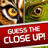 Codes for Guess the Close Up! - Photo Trivia Quiz Word Game! Hack