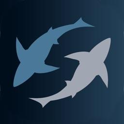 SHARK! SHARK!! SHARK!! XL