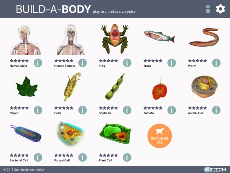 Build a Body: Biology Systems screenshot-0