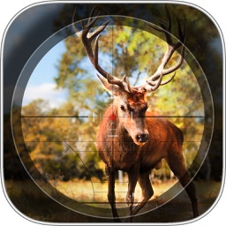 Contract Deer Hunter