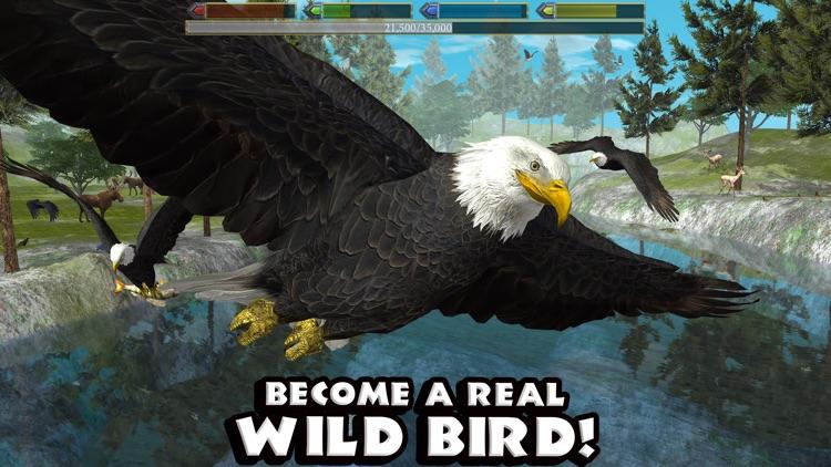 Ultimate Bird Simulator screenshot-0