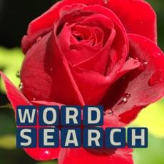 Activities of Wordsearch Revealer Bouquet
