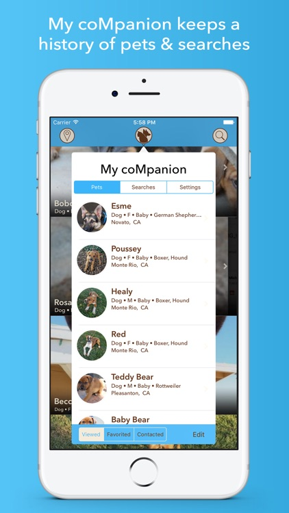 coMpanion - Pet Finder and Adoption Assistant screenshot-3
