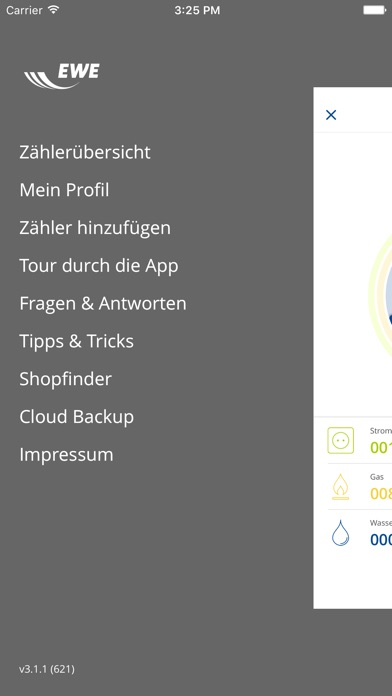 EWE Energiemanager 3.0Screenshot von 4