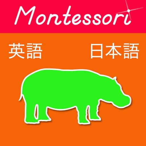 アニマル!日本語から英語へ!-モンテソーリの単語入門