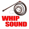 Big Bang Whip Sound & More! Reviews