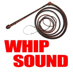Big Bang Whip Sound & More!