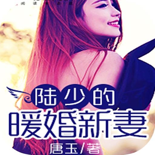 经典豪门总裁梦幻文:陆少的暖婚新妻