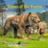 Codes for Tigers of the Forest Hack