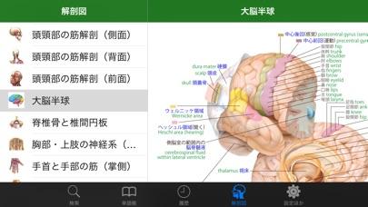ステッドマン医学大辞典 改訂第6版 screenshot1