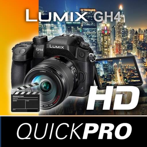 Panasonic Lumix GH4 from QuickPro HD