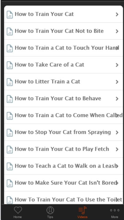 Cat Training - Basic Tips For Beginners screenshot-4