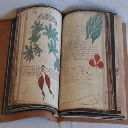 Voynich Manuscript Kit