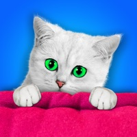 Codes for Find the Cats! ~ Free Photo Shuffle Games Hack