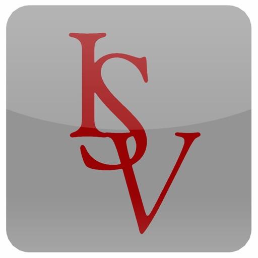 ISV icon