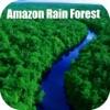 Amazon Rain Forest Tourist Travel Guide