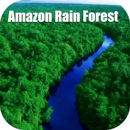 Amazon Rain Forest Tourist Travel Guide