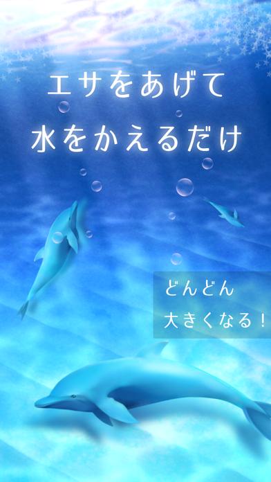 イルカ育成ゲーム