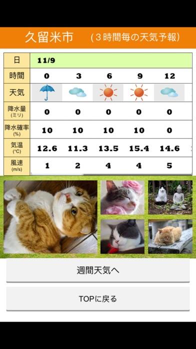 みんなのにゃんこ天気〜天気予報+猫写真で毎日に少しほっこり〜紹介画像2