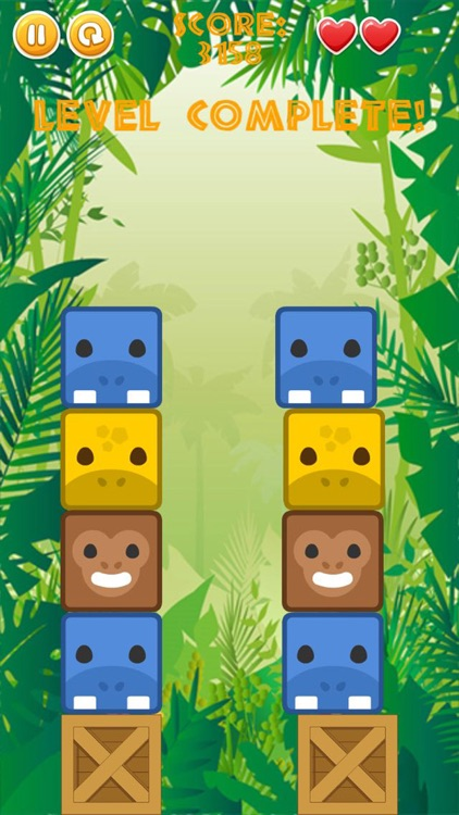 Jungle Joey