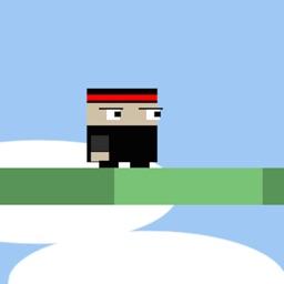 Cubed Ninja