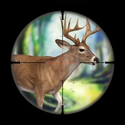 Big Deer Hunting Game : Sniper Forest Hunt Free