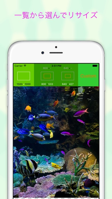 EverClipper - 写真/画像を簡単リサイズ ScreenShot0