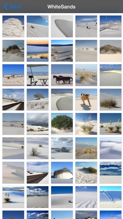 White Sands National Park screenshot-4