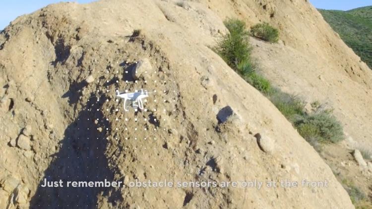 PROCAM for Phantom 4 Drone