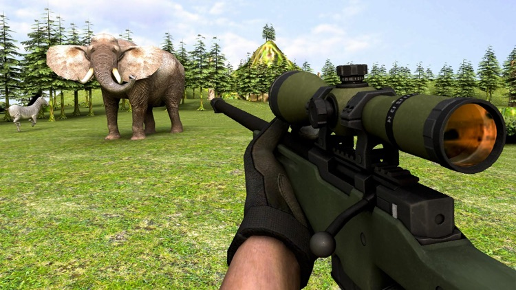 Wild Animal Hunter 2017  Forest Escape