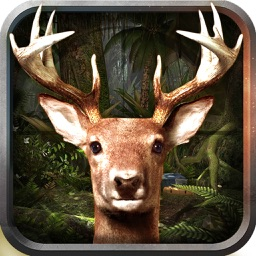 Deer Predator 3D Animal Hunt Wild Safari Park 2k16